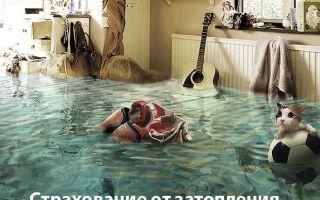 Как оформить страховку от затопления?