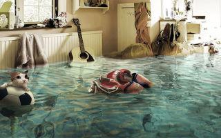 Что делать, если затопили соседей?